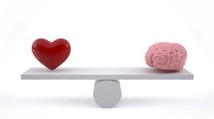 Emotionen im Lot Training der Gefühle